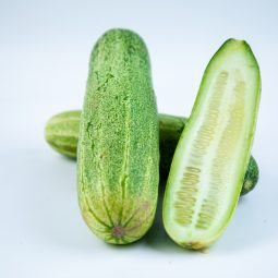 Safe Fresh and Local Cucumber
