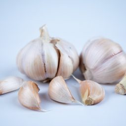 Safe Dried and Local Garlic