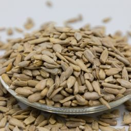 Fresh, Organic, and Natural Sunflower Seeds